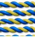 Blue yellow ropes vector image vector image