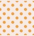 bohemianl hand drawn pattern vector image vector image