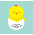 easter sleeping chicken egg shell babackground vector image