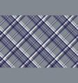 gray diagonal plaid seamless pattern vector image vector image