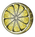 isolated vintage lemon vector image vector image