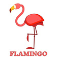 Rosy Flamingo Linear Icon vector image