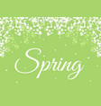 spring background with blooming flowers vector image vector image