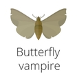 vampire butterfly death vector image