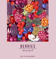 vertical banner with berries vector image