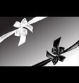 black and white bow vector image