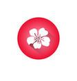 cherry blossom icon japanese sakura flower vector image