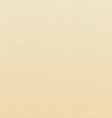 texture of the canvas beige vector image