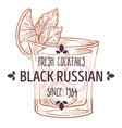 black russian fresh alcoholic beverage cocktail vector image vector image