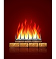burning flames fire vector image vector image