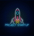 glowing neon sign of business project startup vector image