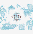 hand drawn cocoa beans branch background vector image
