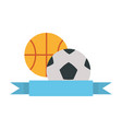 sports balls isolated icon vector image