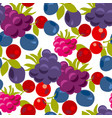 assorted forest berries seamless pattern vector image