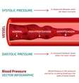 Blood Pressure Infographic vector image vector image