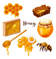 honey drops and flow honeycomb bee and spoon