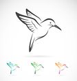 image of an hummingbird design vector image vector image