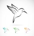 image of an hummingbird design vector image