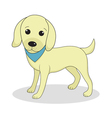 Labrador cute dog Cute white puppy Isolated on whi vector image vector image