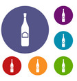 one bottle icons set vector image vector image