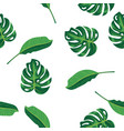 pattern green leaves of tropical plant palm and vector image vector image
