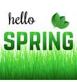 phrase hello spring from grass vector image