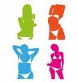 Bikini Girl Colorful Set vector image vector image