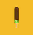 Chocolate Coated Popsicle vector image