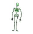 comic cartoon spooky skeleton vector image vector image