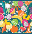 fruit seamless pattern collection exotic vector image