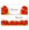 red poppy flower banners vector image