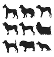 Set of dogs black silhouette vector image vector image
