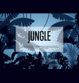 deep tropical jungle background vector image