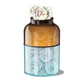 glass jar with pine cones covered with hoarfrost vector image