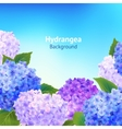Hydrangea Flowers Background vector image