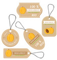 labels with various fruitsfor apricot vector image vector image