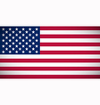 National flag of the USA vector image