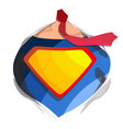 superhero logo diamond shield symbol shape vector image vector image