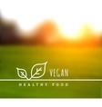 concept natural vegetarian health food vector image