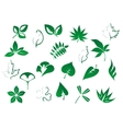 Green tree and plants leaves set vector image vector image
