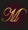 m golden letter vector image