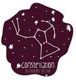 orion constelation design vector image