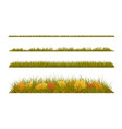 autumn grass with fall leaves on white background vector image
