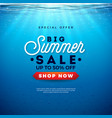 big summer sale design with holiday typography vector image