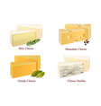 cheese kinds set vector image vector image