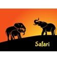 Elephants safari concept vector image vector image