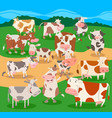 flock of cows farm animal characters group vector image vector image
