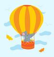 rat in air balloon