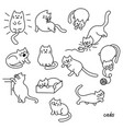 set of cute cat pet animal vector image