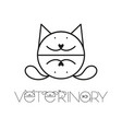veterinary design template vector image